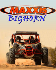 Maxxis Bighorn Tyres